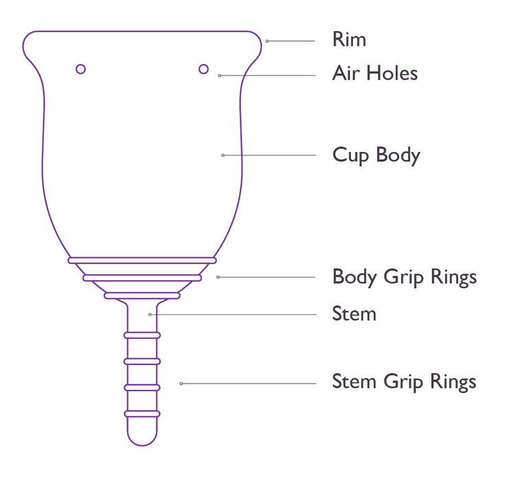 Diagram of a menstrual cup