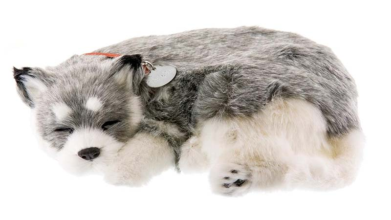 Husky breathing pet by perfect petzzz