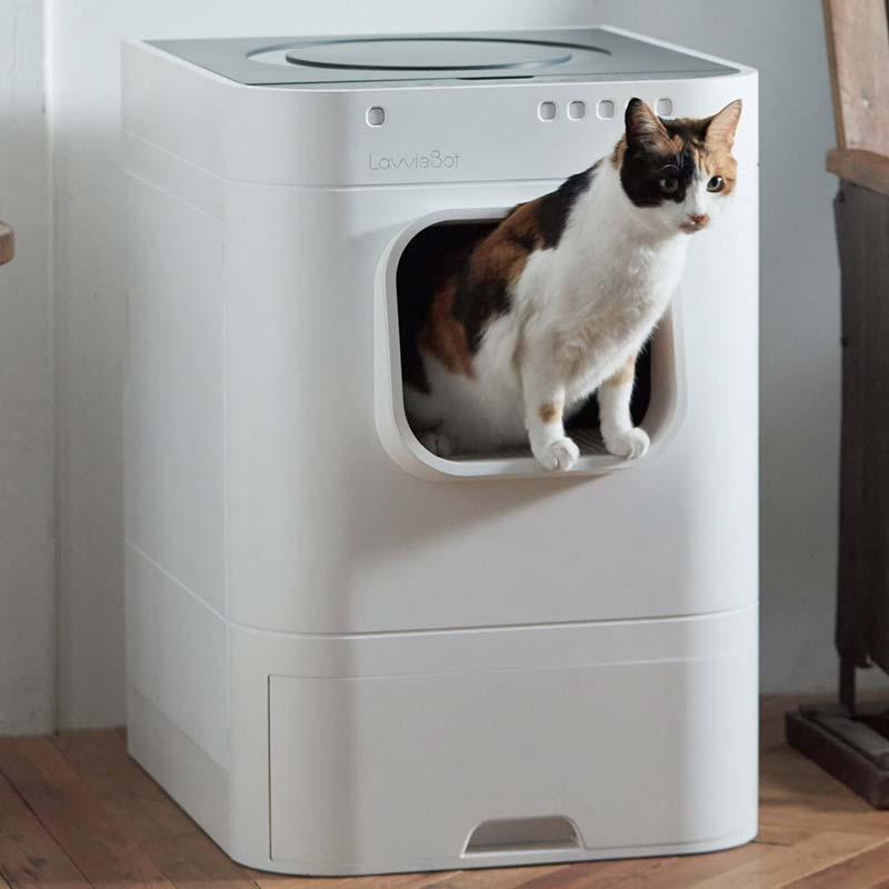 LavvieBot S and a cat peeking out