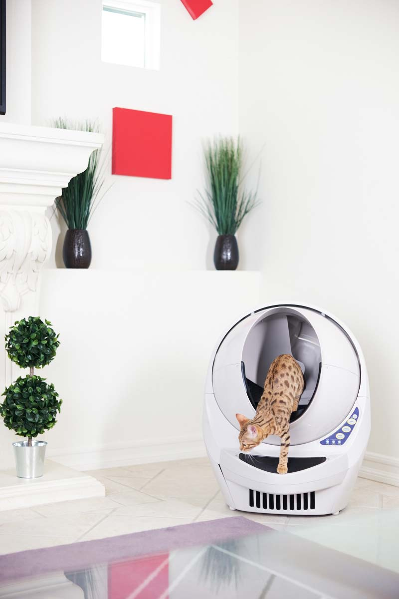 Litter-Robot-III Open Air