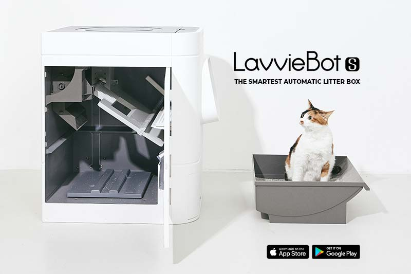 LavvieBot S and sitting cat cover photo