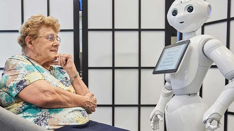 Pepper robot companion