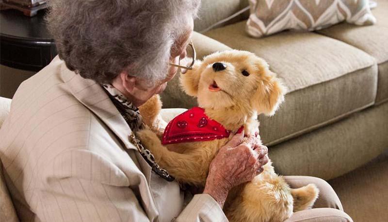 Robot puppy and an elderly